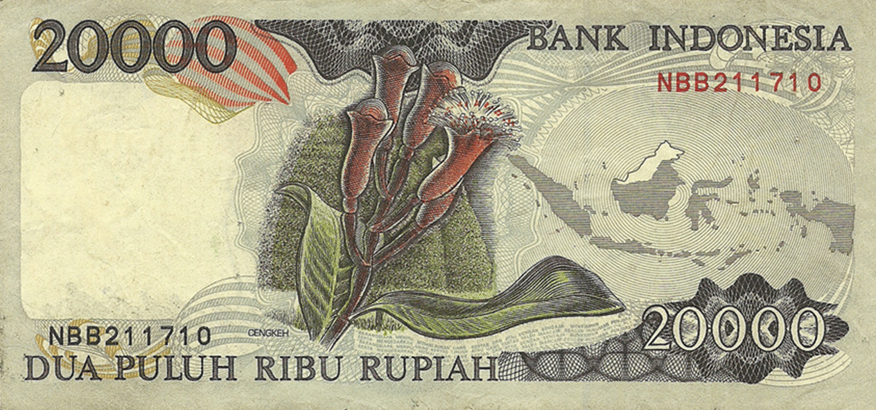 20000 Rupees 1995