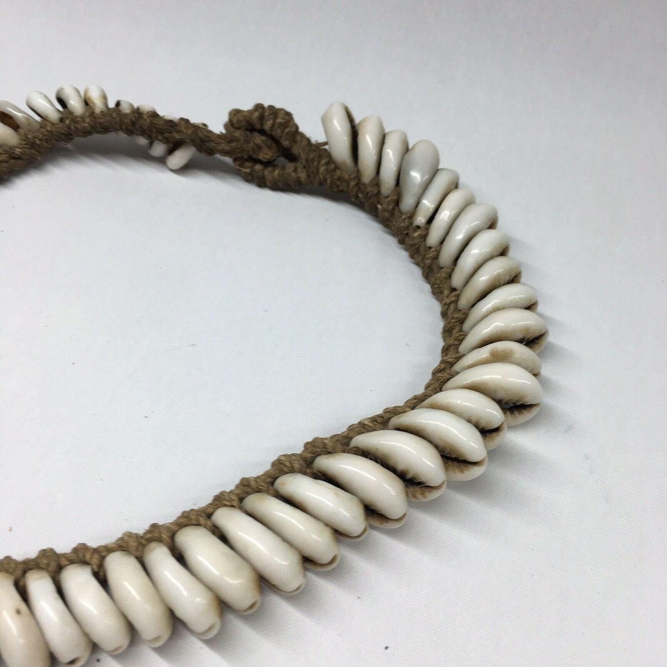 Crowrie shell necklace
