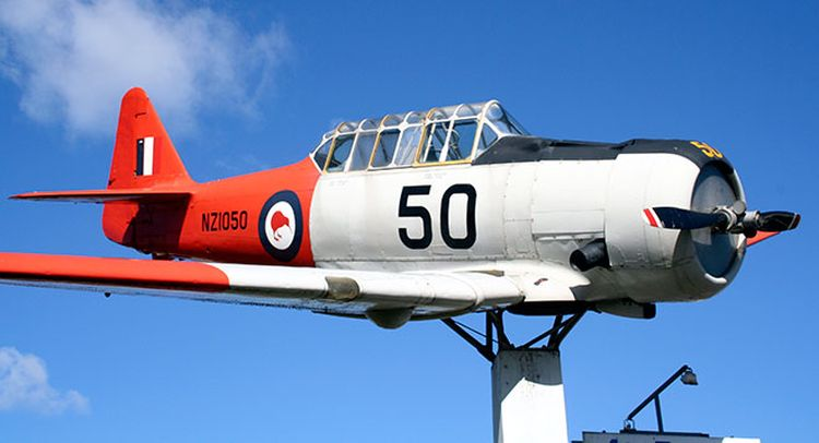 Royal air force kiwi